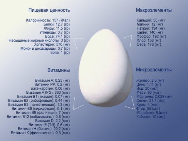 Что входит в состав куриного яйца