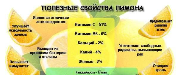 Польза лимона для кормящей женщины