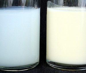 голубое грудное молоко