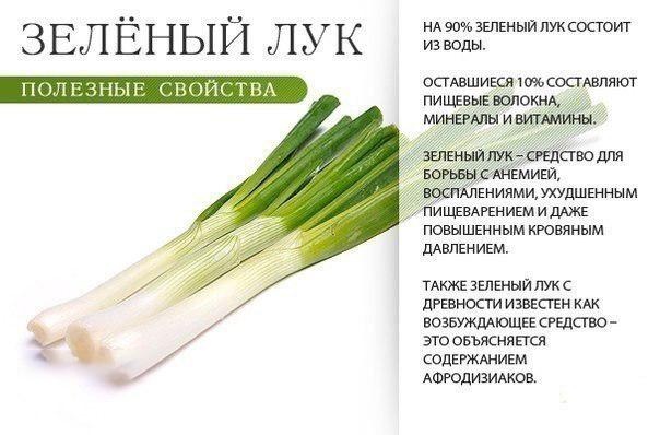 Зеленый лук при грудном вскармливании